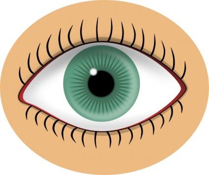 Blue Eye clip art Free Vector - People Vectors | DeluxeVectors.com clip art black and white library