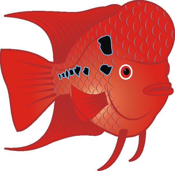 Flowerhorn clip art at. Fish teacher clipart