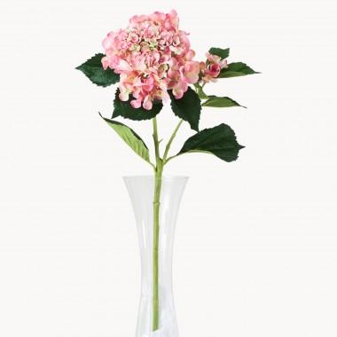 1 flower clip freeuse download Flowers, Vases & Baskets | One World clip freeuse download