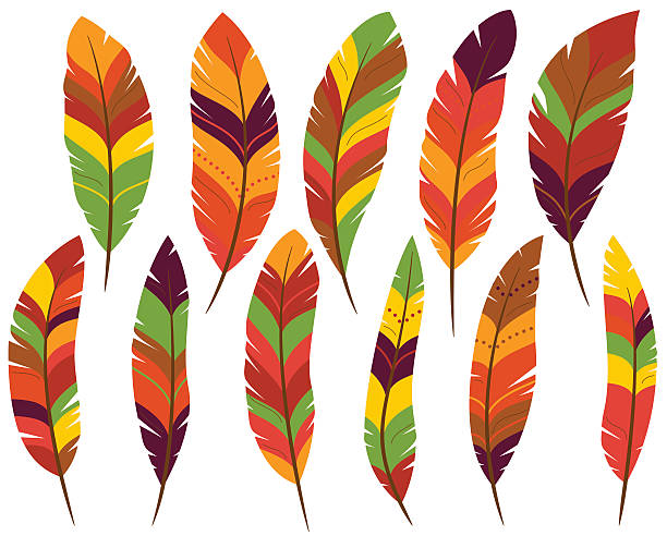 Turkey feathers pictures clipart jpg library library Feathers clipart 4 » Clipart Station jpg library library