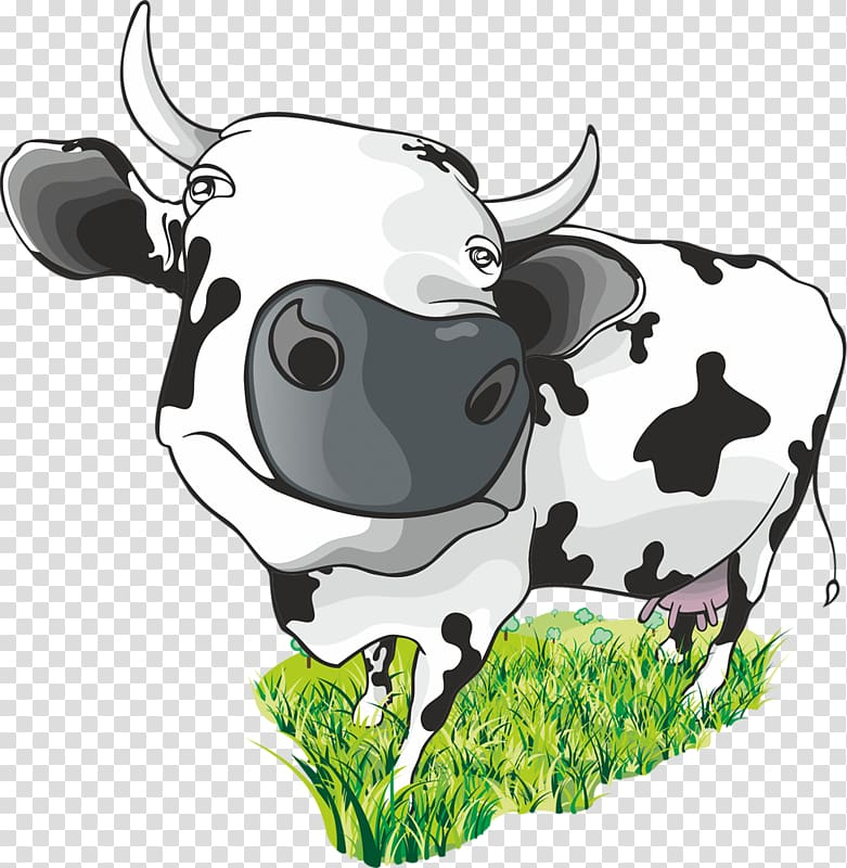 101 dalmatian cows clipart jpg black and white download Guernsey cattle Dairy cattle , COW MILKMAN transparent background ... jpg black and white download