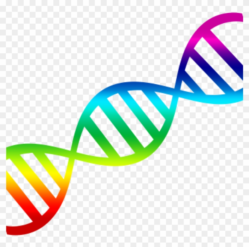 1024x1024 transparent clipart image library Dna Clipart Png Transparent Background - Clipart Dna Double Helix ... image library