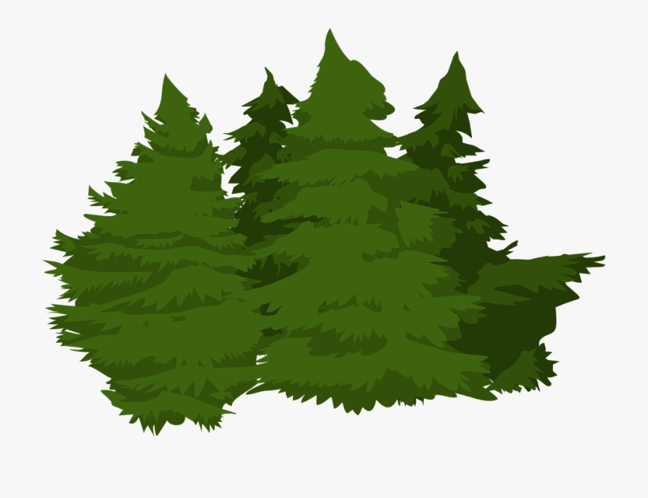 18 trees clipart graphic freeuse stock Vector Pine Trees 17, Buy Clip Art - Pinos De Bosque Png #182894 ... graphic freeuse stock