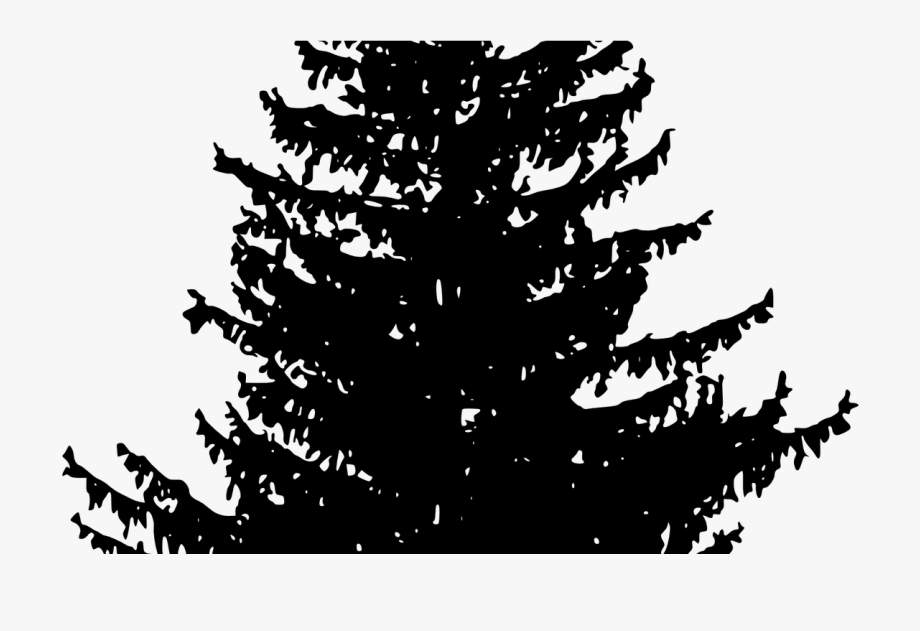 Sunrise with pinetrees clipart
