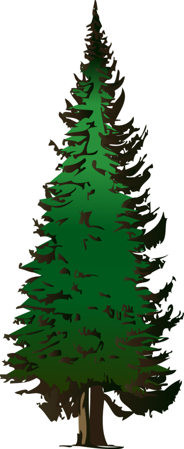 Winter pine tree clipart clip art royalty free stock Web Design & Development | Pinterest | Evergreen trees, Clip art and ... clip art royalty free stock