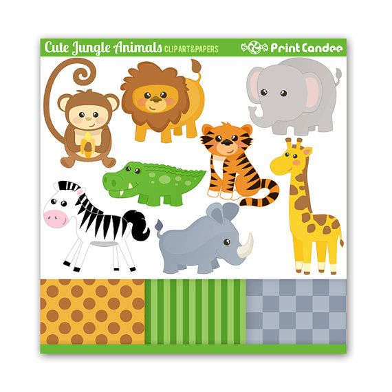 best images about. 1st jungle animal birthday clipart