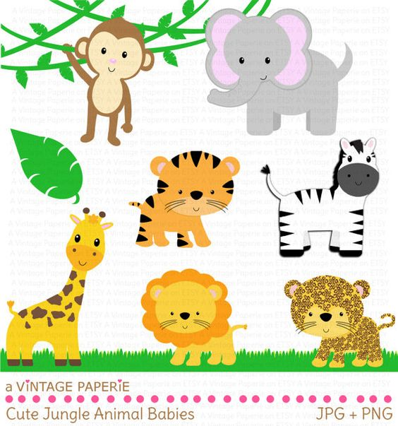 1st jungle animal birthday clipart. Clip art zoo by