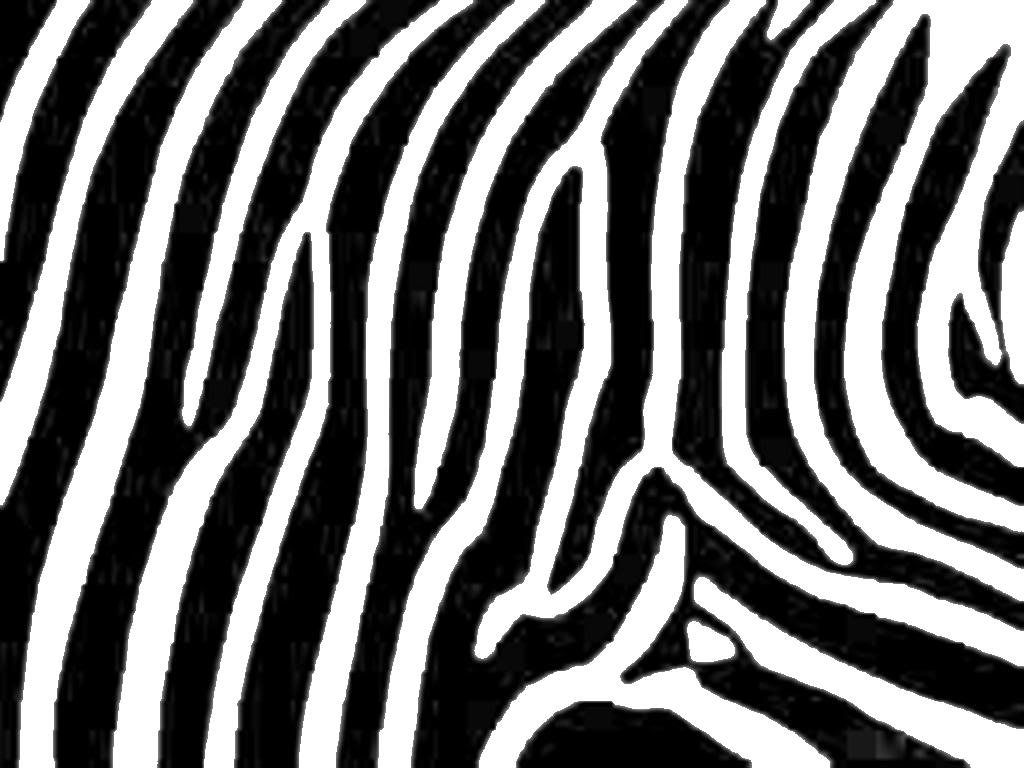 2 clipart black and white zebra print freeuse library Zebra print clipart 2 » Clipart Station freeuse library