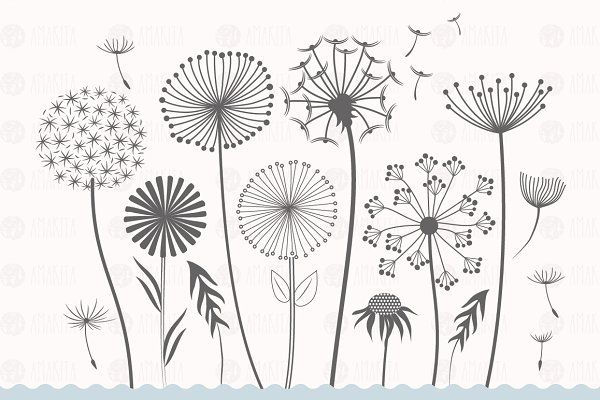 2 dandelions clipart clipart royalty free dandelion flower clipart - Illustrations - 2   WishFlower Bar ... clipart royalty free