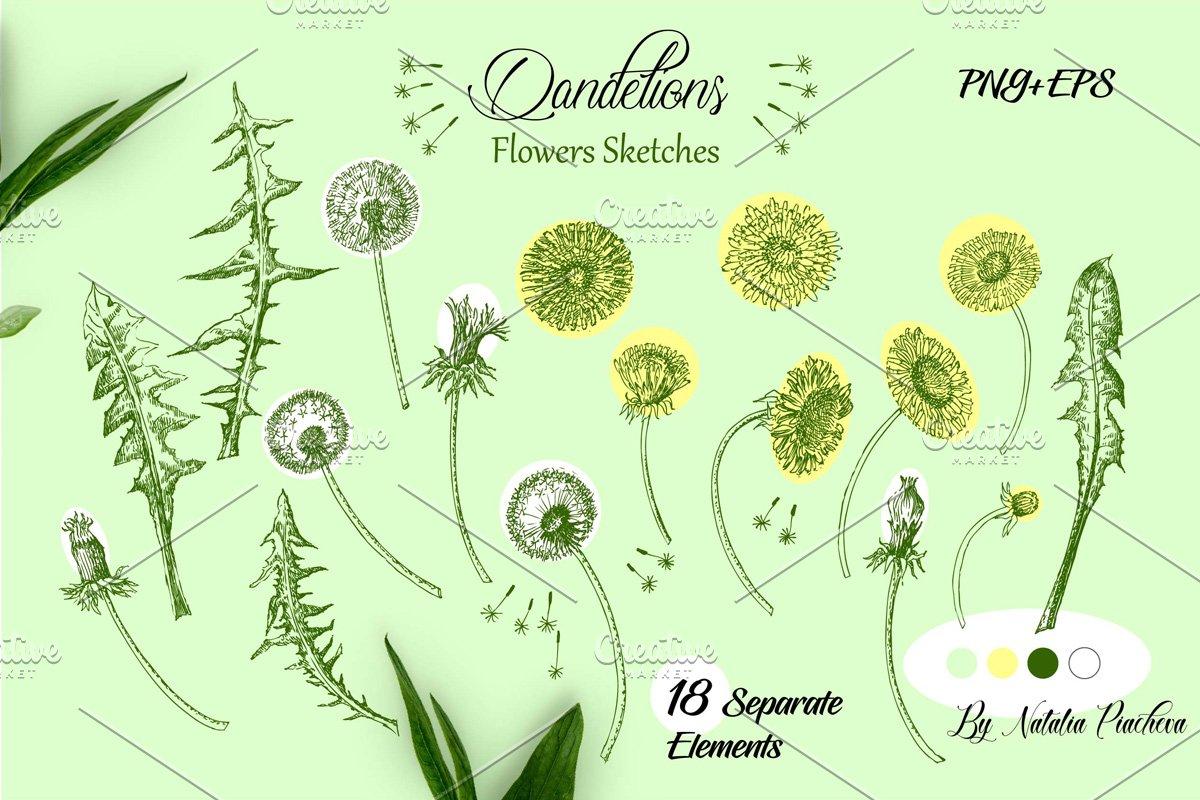 2 dandelions clipart jpg download Dandelions Digital Clipart ~ Illustrations ~ Creative Market jpg download