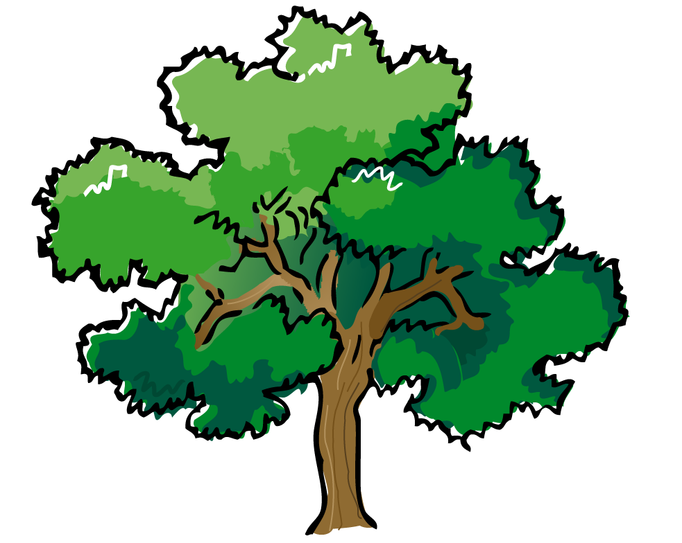 2 green trees clipart png download Trees tree clipart free clipart images 2 - Clipartix png download