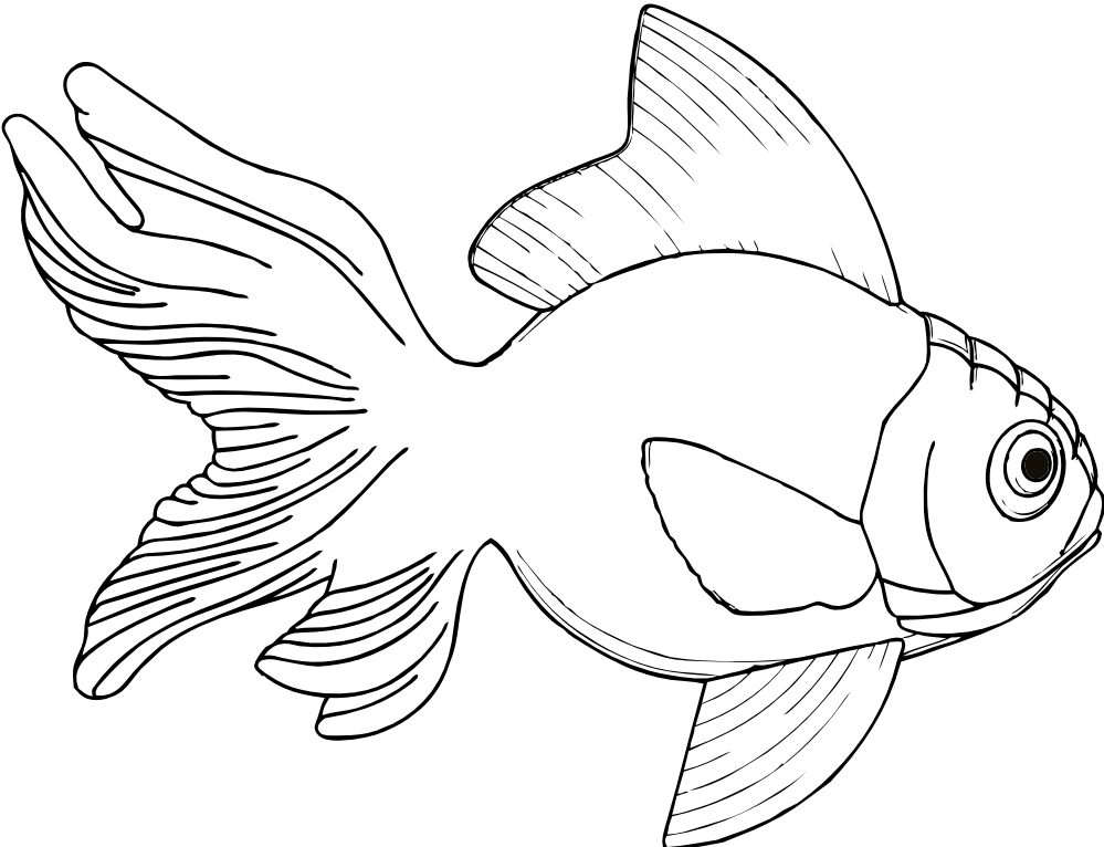 Clipart black and white fish banner freeuse clipartist.net » Clip Art » fish 2 black white line art SVG banner freeuse