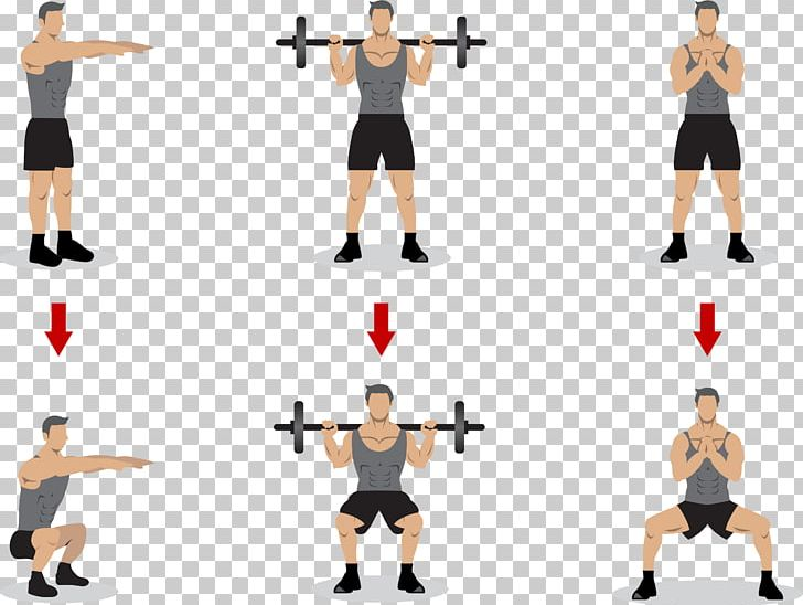 Squat Olympic Weightlifting Physical Exercise Strength Training PNG ... free