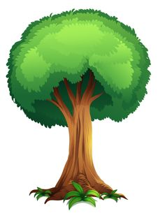 2 green trees clipart banner royalty free green tree clipart - Clip Art Library banner royalty free