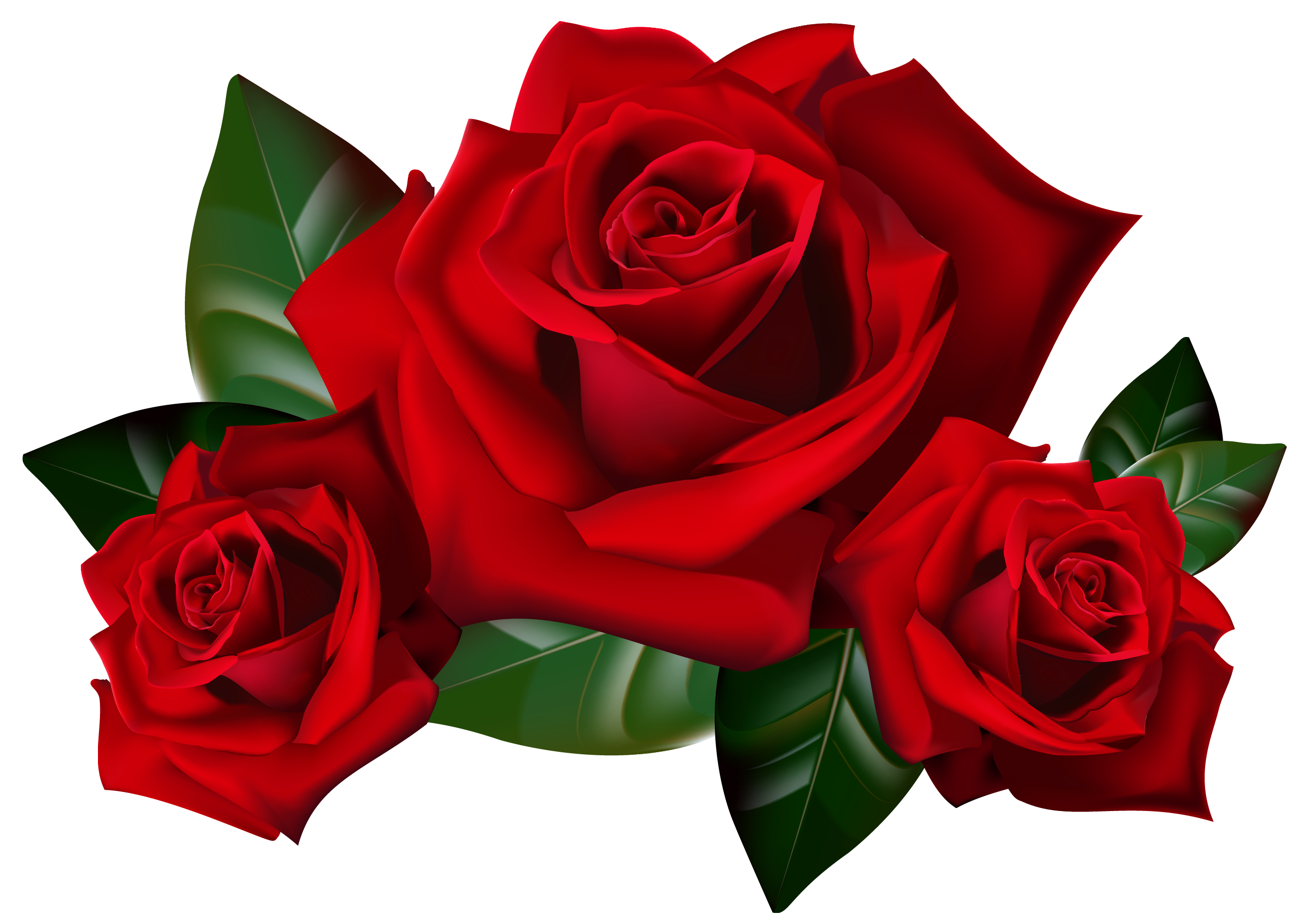 2 roses clipart image transparent download Rose Clip Art Free On Clipart Transparent Png 2 - AZPng image transparent download
