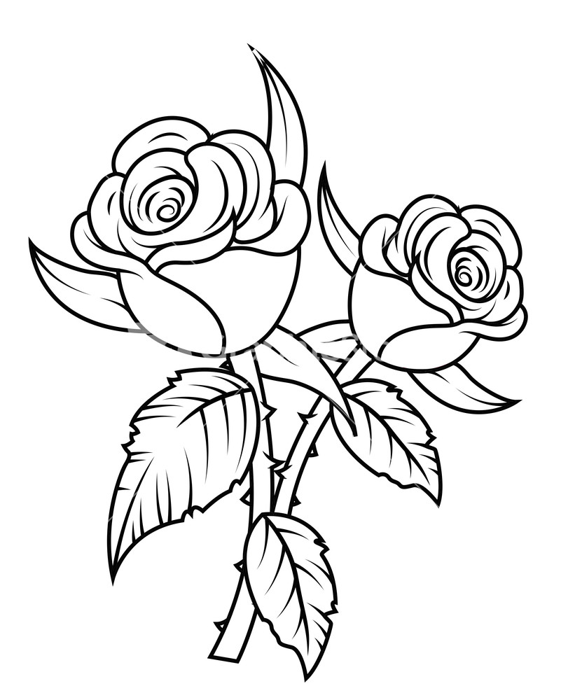 Free Roses Clip Art, Download Free Clip Art, Free Clip Art on ... clipart transparent download