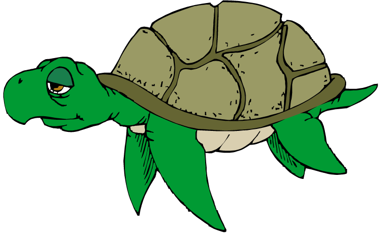 31+ Turtles Clipart | ClipartLook vector free library