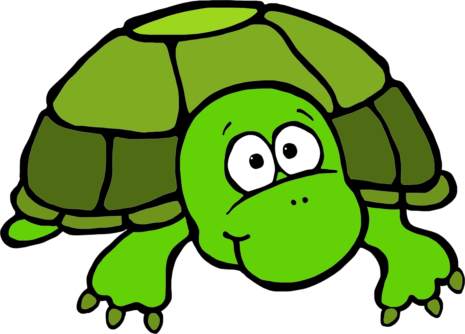 Turtles Clipart | Free download best Turtles Clipart on ClipArtMag.com graphic transparent