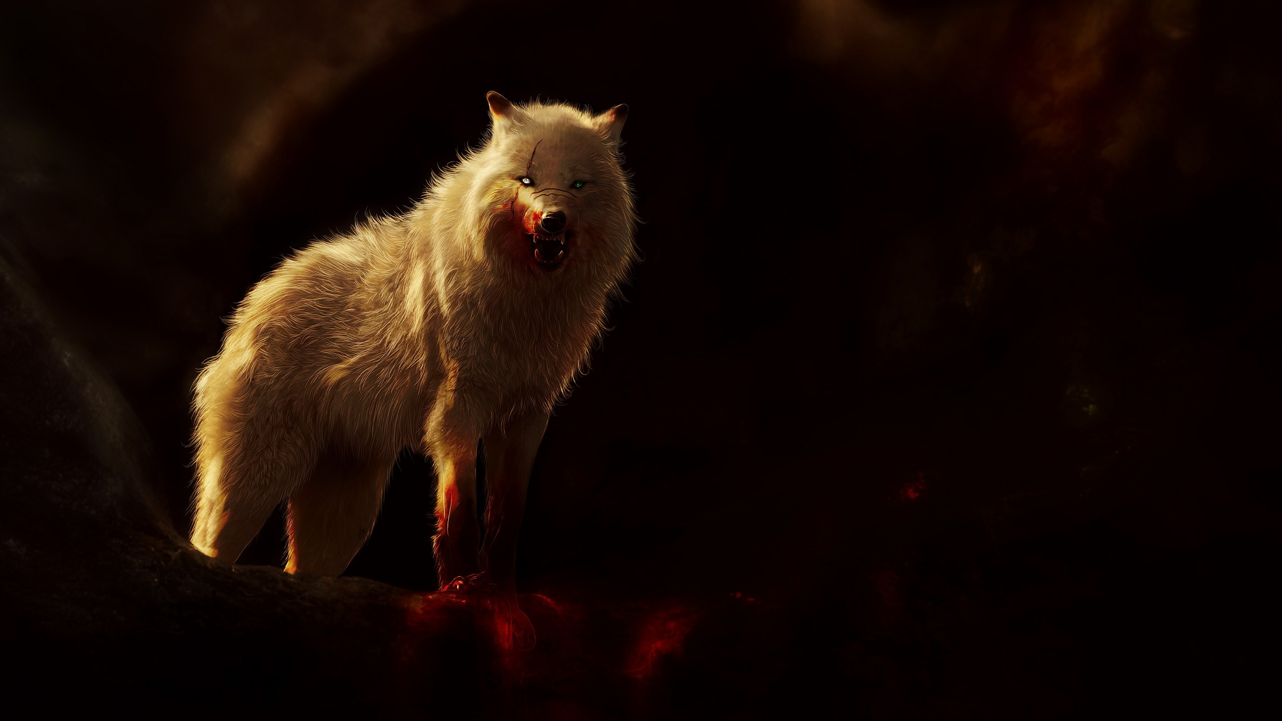 2560x1440 wolf clipart clipart freeuse Arctic Wolf Wallpaper(54+), Download HD Wallpapers clipart freeuse