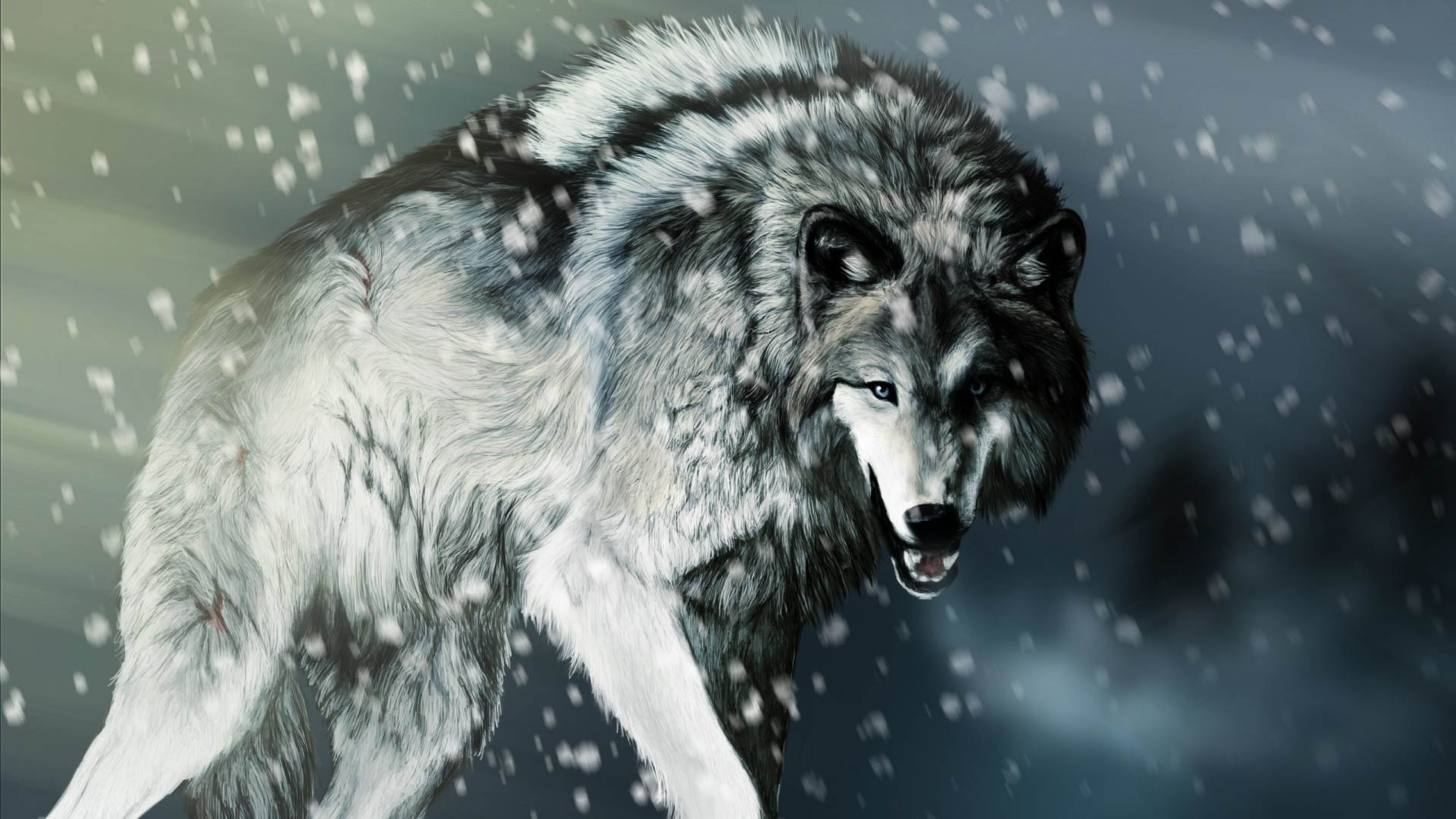 2560x1440 wolf clipart banner freeuse wolf winter wallpaper banner freeuse