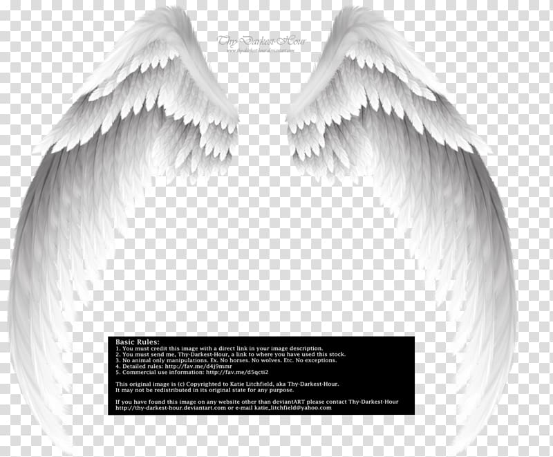 3 angel baby clipart black and white clip transparent library Michael Archangel Fallen angel , angel baby transparent background ... clip transparent library