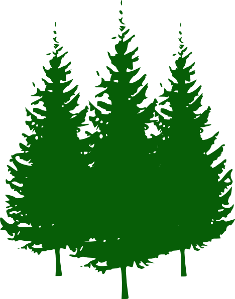 Pine tree free images. Forest trees clipart