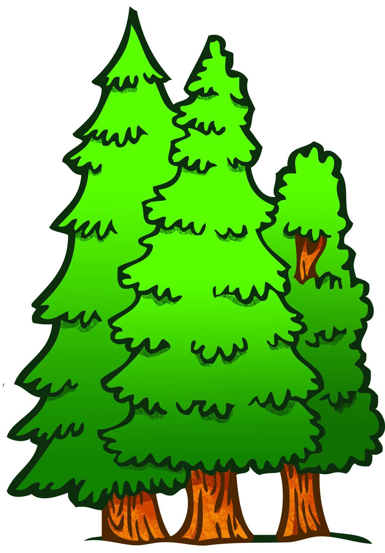 Fir tree download best. Forest clipart free