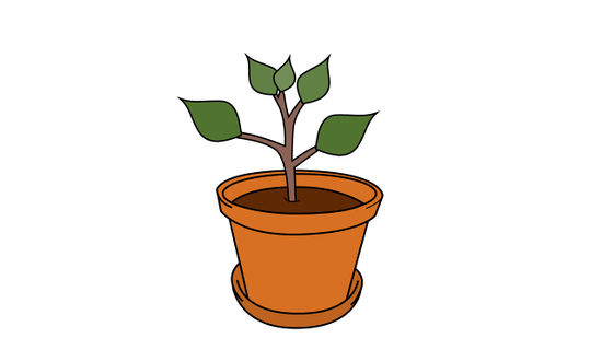 3 plant container clipart graphic royalty free download How to Grow an Apple Tree from a Seed (with Pictures) - wikiHow graphic royalty free download