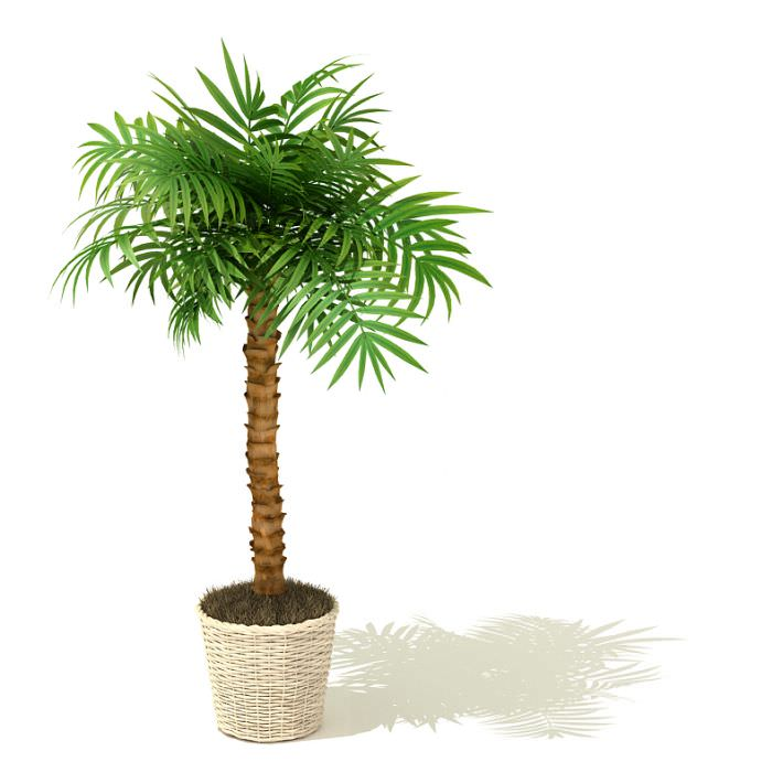 3 plant container clipart svg black and white download Free Pics Of Pot Plants, Download Free Clip Art, Free Clip Art on ... svg black and white download