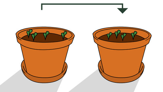 3 plant container clipart vector free download How to Grow Plants from Seed (with Pictures) - wikiHow vector free download