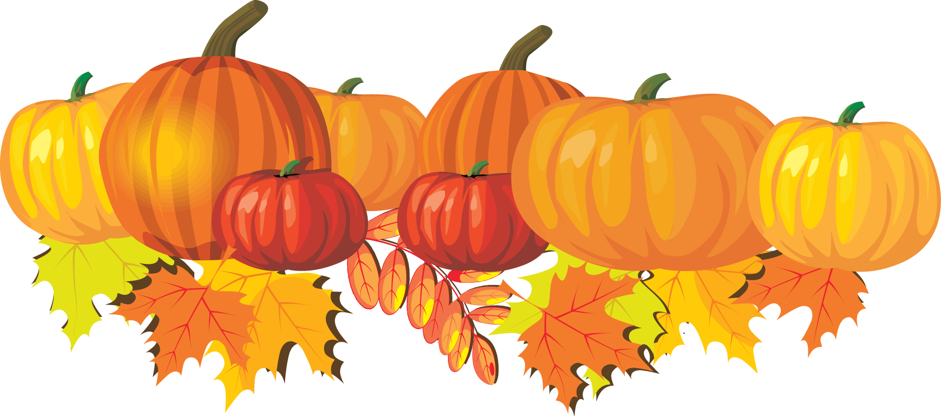 Pumpkin clipart wallpaper for fall