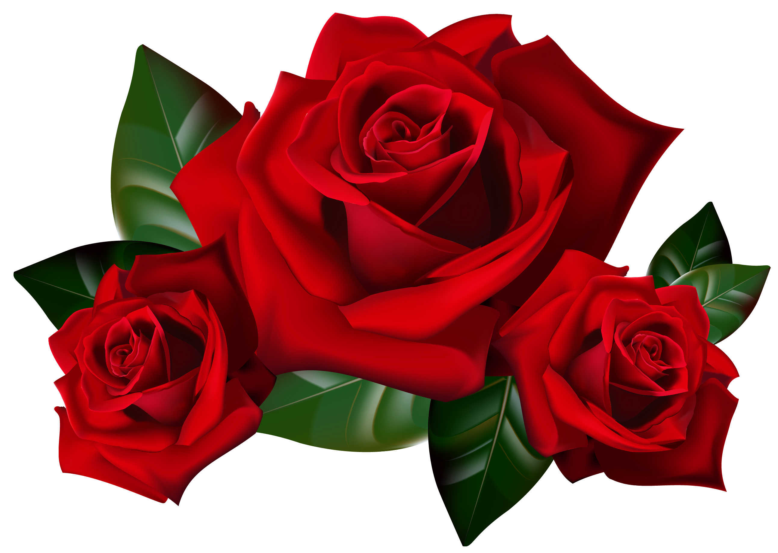 Red rose clipart image png transparent library Red Roses PNG Clipart Picture | Gallery Yopriceville - High-Quality ... png transparent library