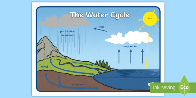 3 stages of water cycle label clipart graphic freeuse stock FREE! - The Water Cycle Display Posters graphic freeuse stock