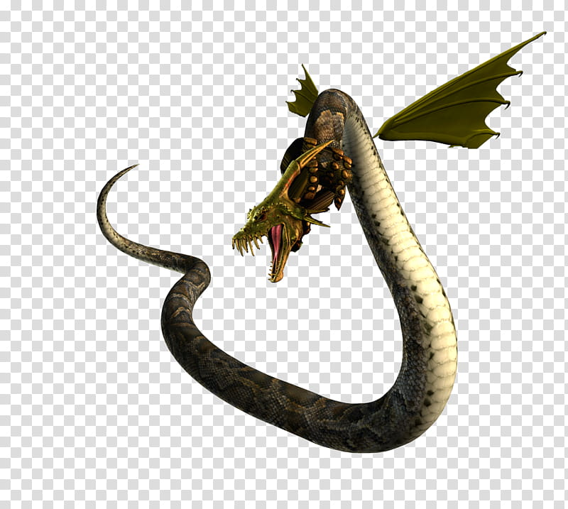 3d clipart monster png royalty free library Dragon Snake d, green and black monster illustration transparent ... png royalty free library