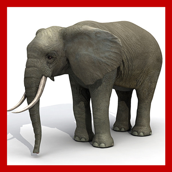 3d elephant clipart jpg royalty free STL Finder | Searching 3D models for elephant-(high-and-low-poly ... jpg royalty free