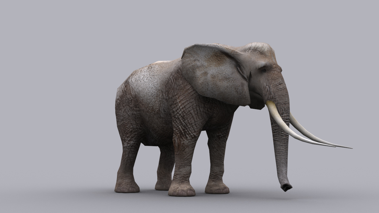 3d elephant clipart png free download ELEPHANT GAME READY ANIMATED MODEL 3D Model Game ready animated ... png free download