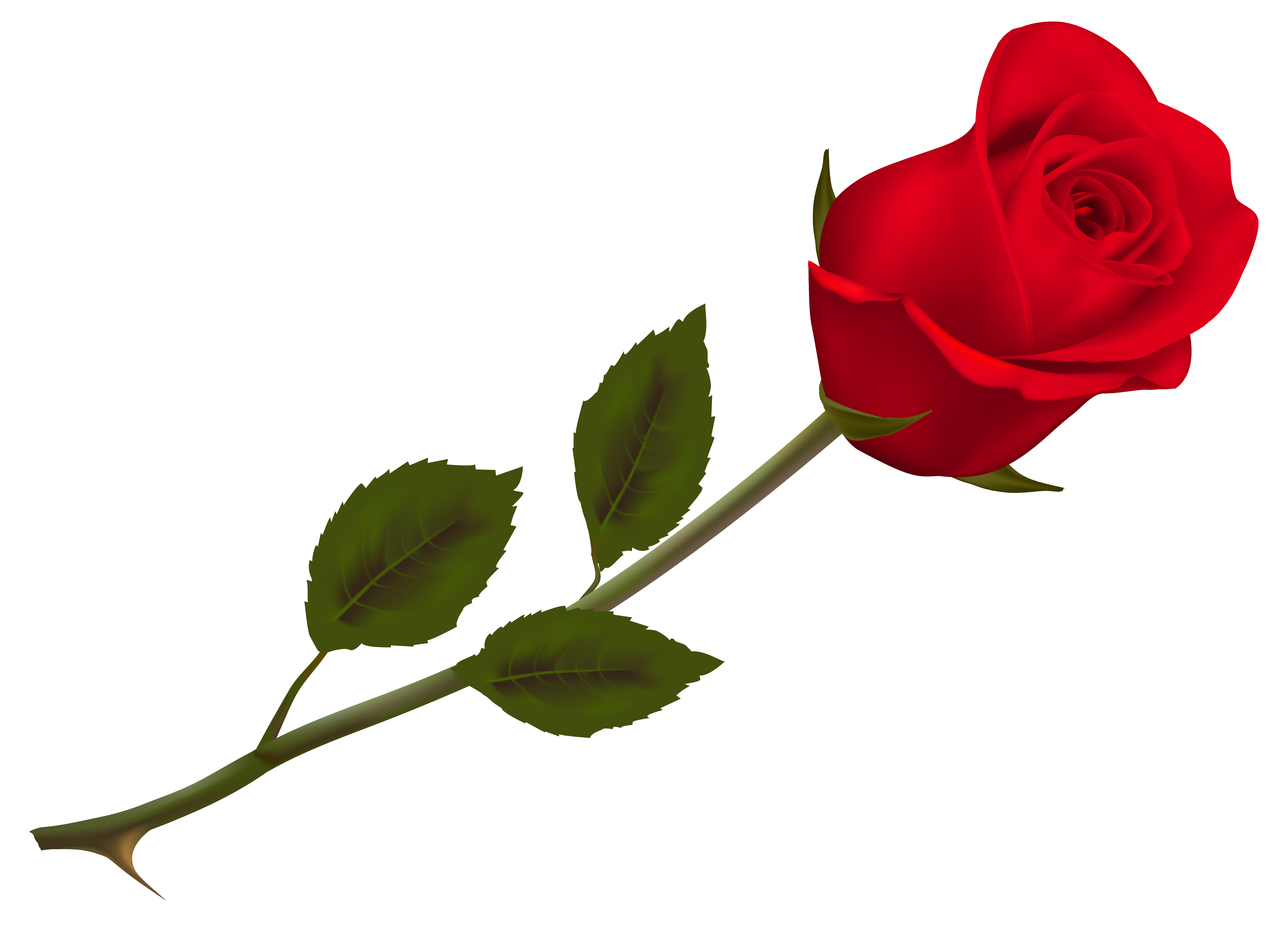 Crown of roses clipart picture transparent library Transparent Beautiful Red Rose PNG Picture | Gallery Yopriceville ... picture transparent library