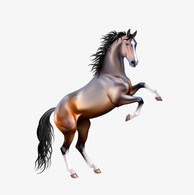 PNG HD Horse Transparent HD Horse.PNG Images. | PlusPNG svg freeuse library