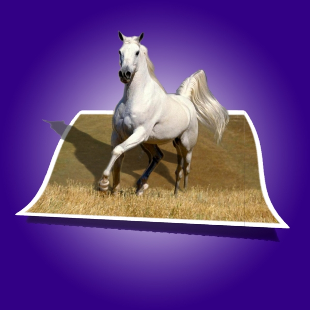 Horse 3d, Horse, 3d, Pop Out PNG Transparent Clipart Image and PSD ... banner free library