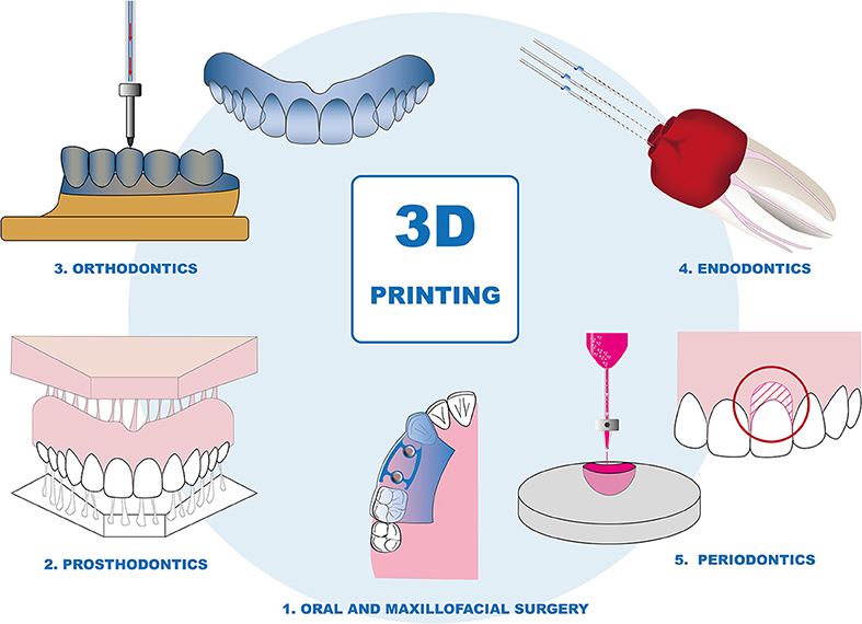 Frontiers | 3D Printing—Encompassing the Facets of Dentistry ... vector freeuse