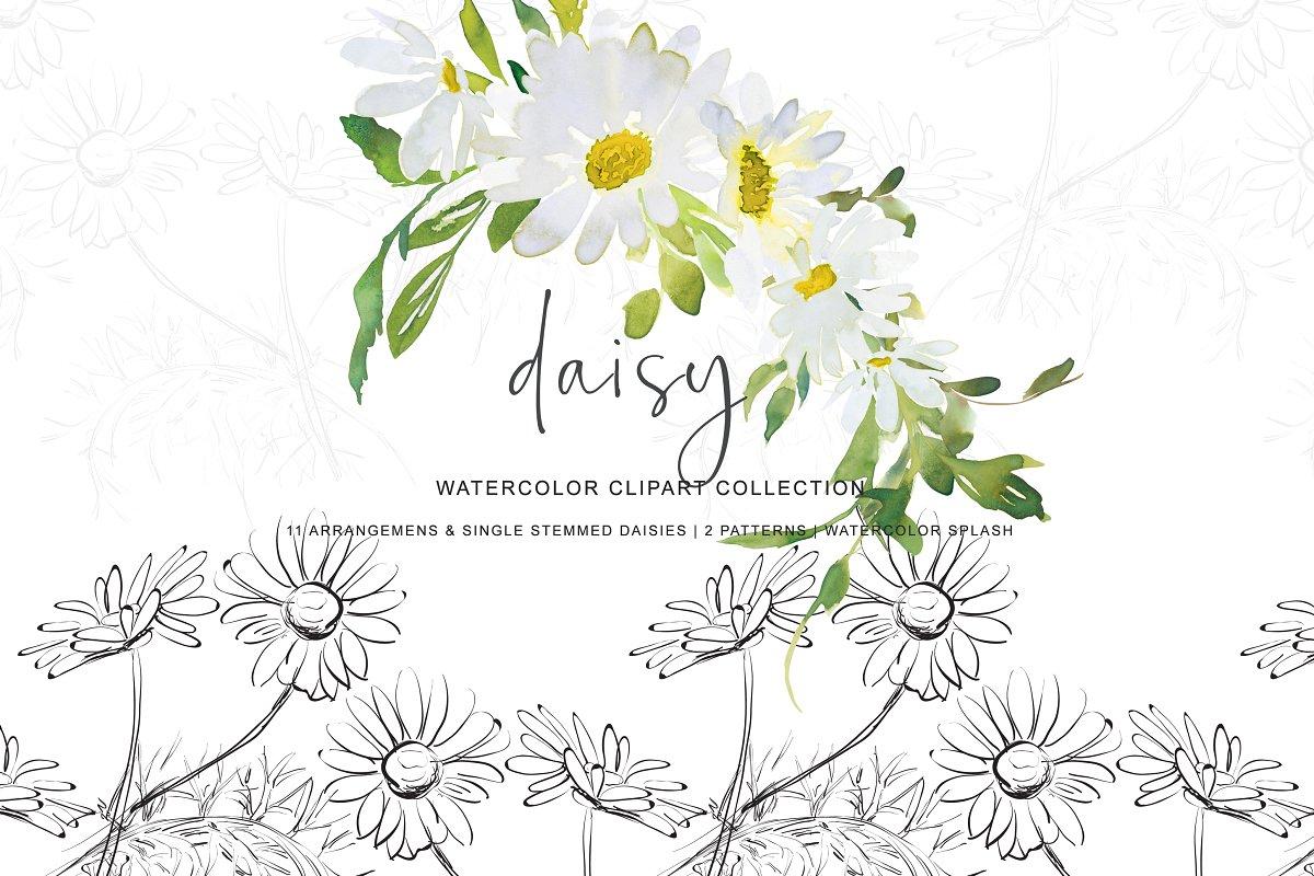 3d paint daisy clipart vector library library Watercolor Daisy Clip Art ~ Illustrations ~ Creative Market vector library library