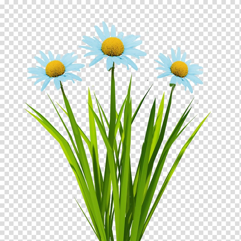 3d paint daisy clipart picture freeuse stock Texture mapping Flower 3D computer graphics Animation, blue flowers ... picture freeuse stock