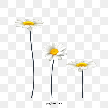 Daisy Clipart Images, 339 PNG Format Clip Art For Free Download ... png library download