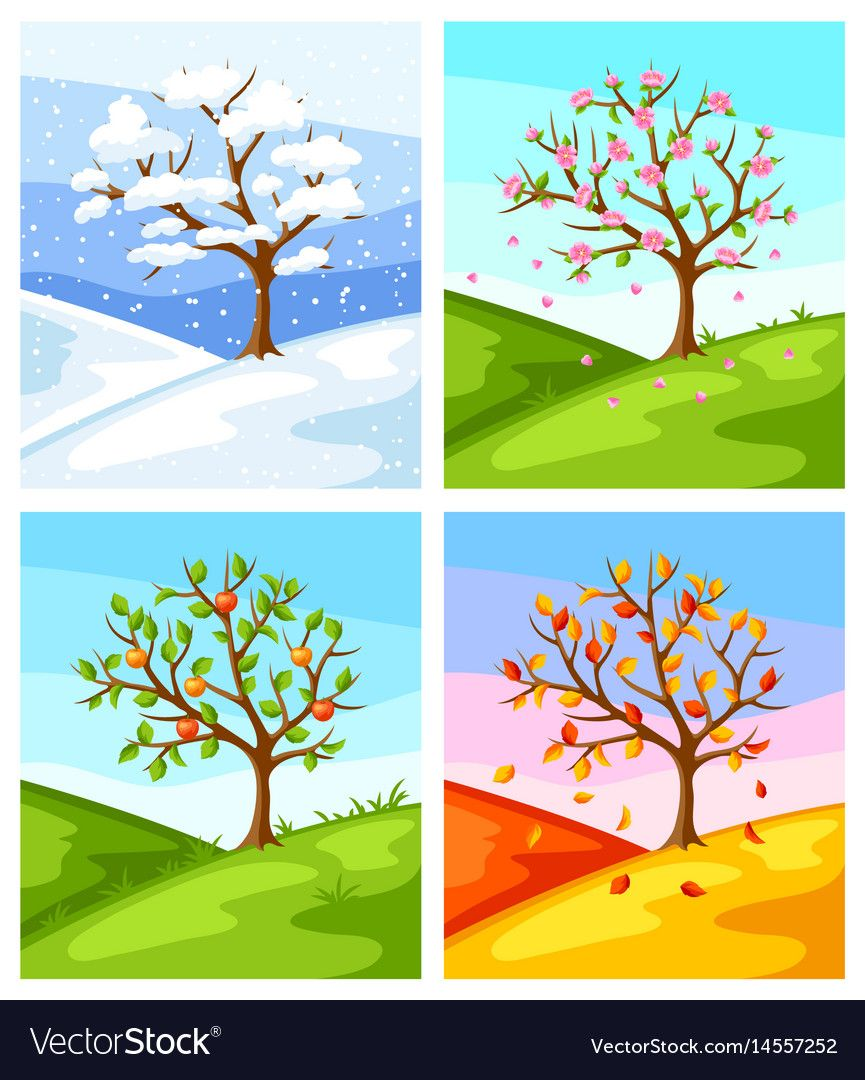 Clipart 4 seasons clip art library stock Four seasons of tree and landscape Royalty Free Vector Image | Art ... clip art library stock