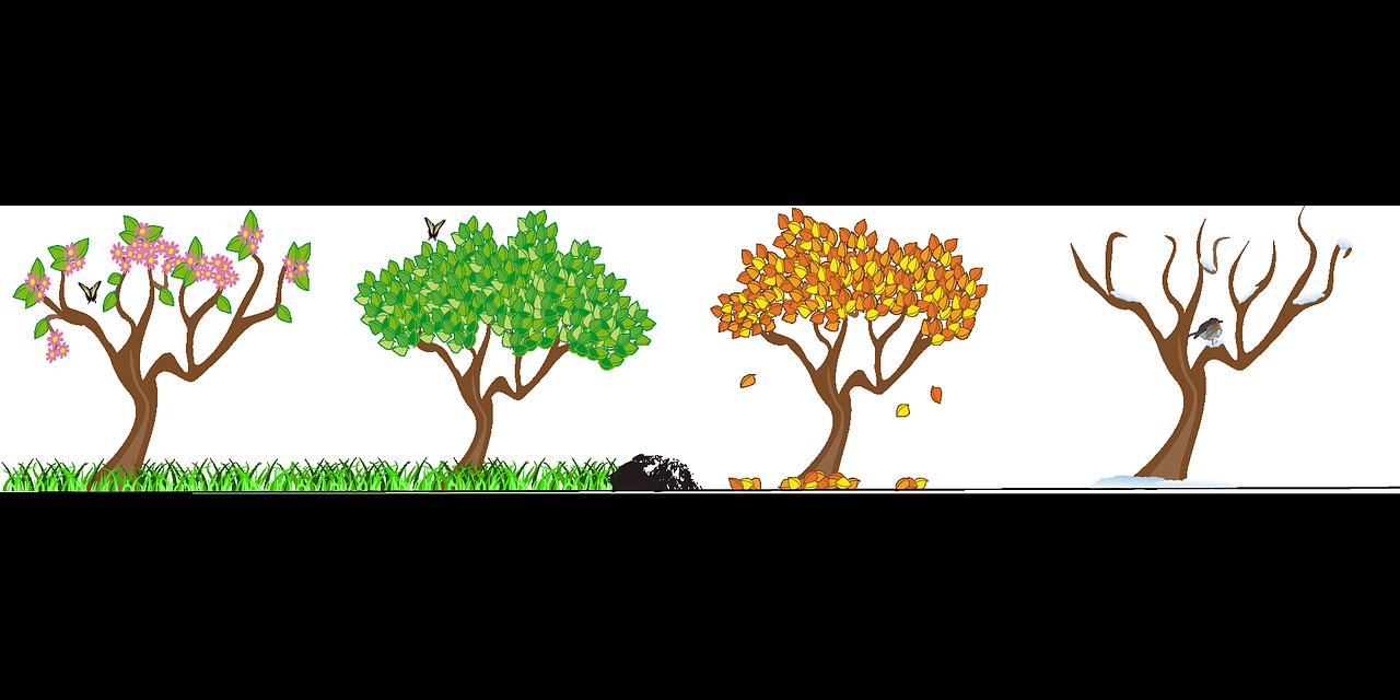 Four seasons tree clipart free jpg freeuse download Blog – 9 Kids Later jpg freeuse download
