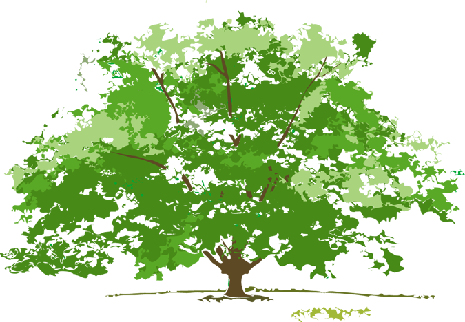 4 seasons tree clipart banner library Beautiful, Free Clip Art for the 4 Seasons | Tree art, Art google ... banner library