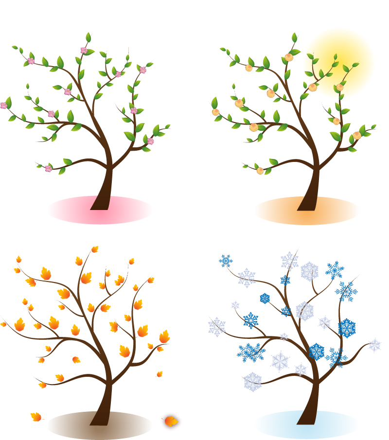 Four seasons tree clipart free png freeuse Four Seasons Png & Four Seasons Png Transparent Images #1174 - PNGio png freeuse