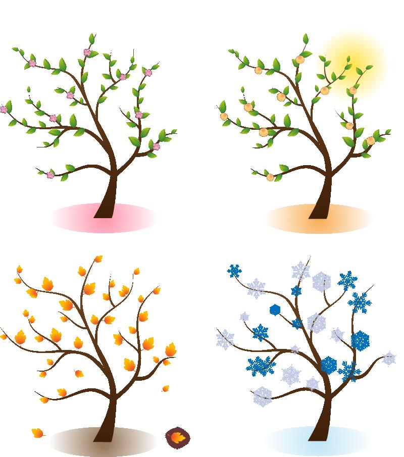 4 seasons tree clipart clip art freeuse Four Seasons Png & Four Seasons Png Transparent Images #1174 - PNGio clip art freeuse