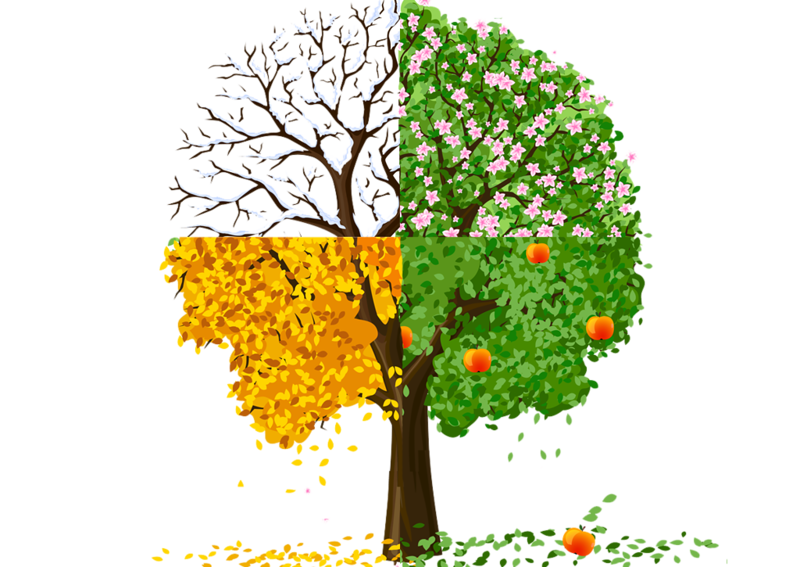 4 seasons tree clipart svg royalty free download http://amour-et-conscience.com/honorer-le-feminin-sacre/arbre-4 ... svg royalty free download