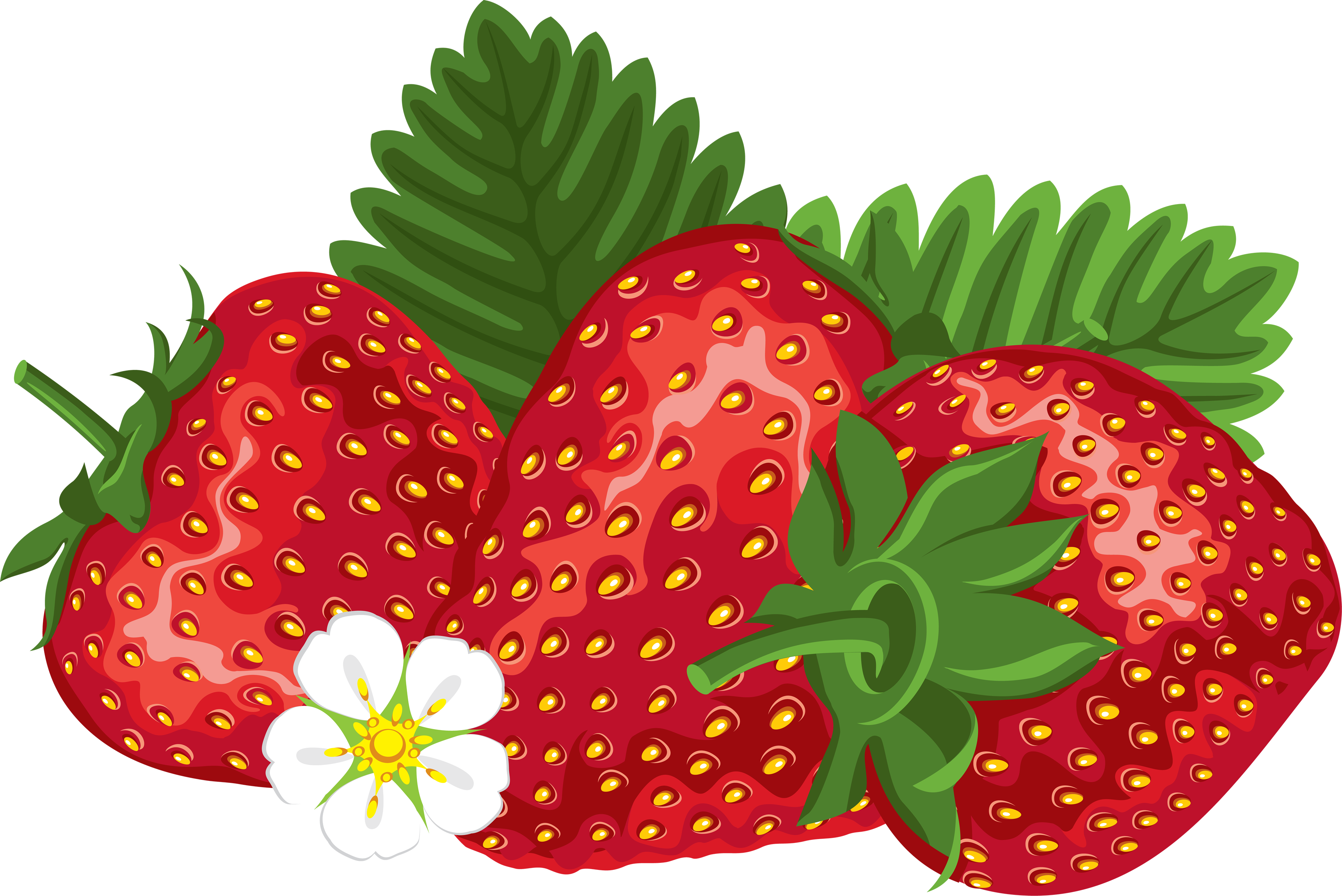Free strawberry clipart